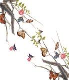 Бабочка и цветок картины акварели, на белой предпосылке Стоковые Изображения