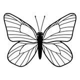 Бабочка, иллюстрация вектора Стоковая Фотография RF