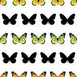 Бабочка монарха вектора Stripes безшовная картина Стоковая Фотография