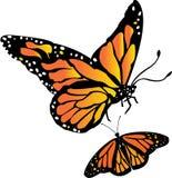 Бабочка монарха бесплатная иллюстрация