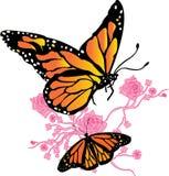 Бабочка монарха иллюстрация вектора
