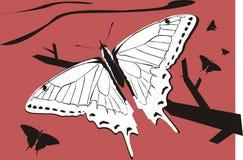 Бабочка на дереве иллюстрация вектора