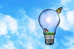 Бабочка на предпосылке II неба лампы Стоковое фото RF