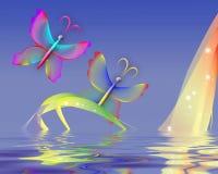 бабочка над прозрачной водой Стоковые Изображения RF