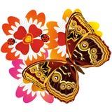 Бабочка на flower-6 Стоковое Изображение