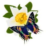 Бабочка на flower-9 Стоковая Фотография RF