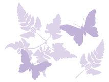 бабочка предпосылки флористическая Стоковая Фотография