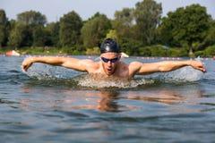 Бабочка пловца или ход заплывания дельфина Стоковое фото RF
