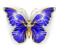 Бабочка сапфира бесплатная иллюстрация