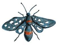 Бабочка сине-черна с белыми пятнами на своих крылах Эскиз с покрашенными карандашами от руки Изображение растра Стоковое фото RF