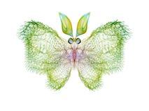 Бабочка фрактали Стоковые Фотографии RF