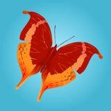бабочка 2 иллюстрация штока