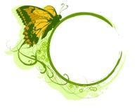 бабочка 4 знамен Стоковое Фото