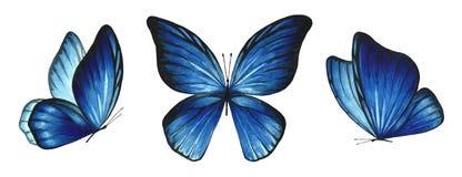 3 бабочки акварели голубых ярких стоковые фото