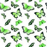 Бабочки Безшовная предпосылка акварель Стоковая Фотография RF