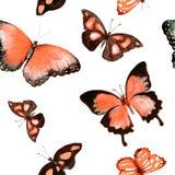 Бабочки Безшовная предпосылка акварель Стоковые Изображения RF