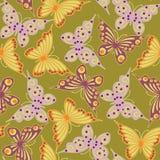 бабочки безшовные Стоковые Фото