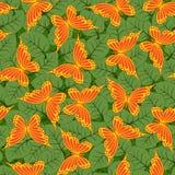 бабочки безшовные Стоковые Фотографии RF