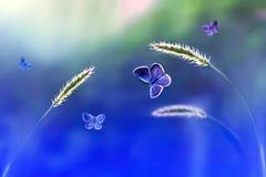 Бабочки в полете против предпосылки одичалой природы в голубых тонах Художническое изображение Стоковые Изображения
