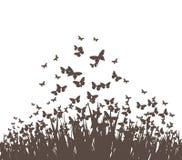 Бабочки и силуэт вектора травы Стоковое Фото