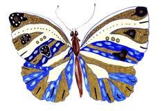 Бабочки иллюстрации нарисованные вручную различных картин стоковые фотографии rf