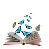 бабочки книги раскрывают Стоковые Изображения RF