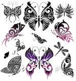 бабочки конструируют установленный tattoo Стоковое Изображение