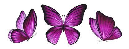 3 бабочки пинка акварели ярких стоковое изображение