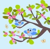 бабочки цветения птиц иллюстрация штока
