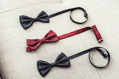 3 бабочки, 2 черного и одного красного цвета Объединяйтесь в команду работа, карьера, битник, wedding концепция Стоковое фото RF