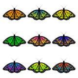 бабочки Стоковое Изображение RF