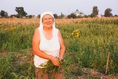 Бабушка в саде Стоковая Фотография