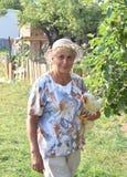 Бабушка с курицей Стоковые Изображения