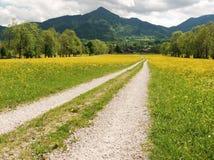 баварская верхушка ландшафта Стоковое Фото