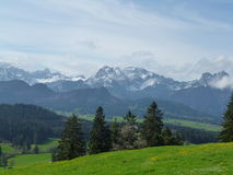 Баварские alps Стоковая Фотография