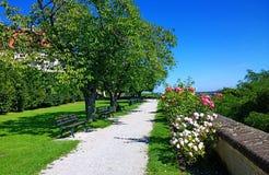 Баварский ландшафт, красивый парк в лете Стоковые Изображения