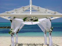 Багамы поженились Стоковое фото RF