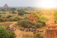 Багги лошади Bagan Стоковые Фотографии RF
