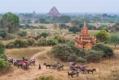 Багги лошади Bagan Стоковое Изображение