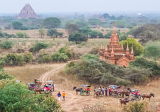 Багги лошади Bagan стоковое фото