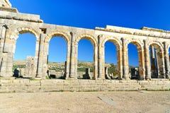 Базилика в римских руинах, старый римский город Volubilis Марокко Стоковое фото RF