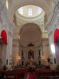 базилика Стоковое Изображение RF