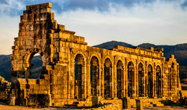 Базилика места Volubilis Стоковое Изображение