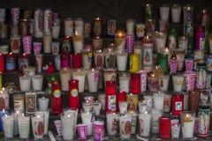 базилики Guadalupe стоковое фото