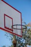 Бакборт баскетбола в ладонях Стоковые Изображения