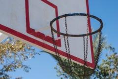 Бакборт баскетбола в ладонях Стоковые Изображения RF