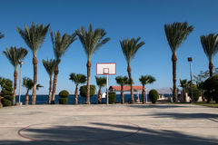 Бакборт баскетбола в ладонях Стоковое Фото