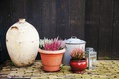 Баки вазы состава с цветками и фонариком на темноте деревянной Стоковые Изображения RF