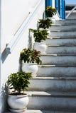 Баки взбираются лестницы на Mykonos Стоковое Изображение
