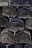 баки омара Стоковое фото RF